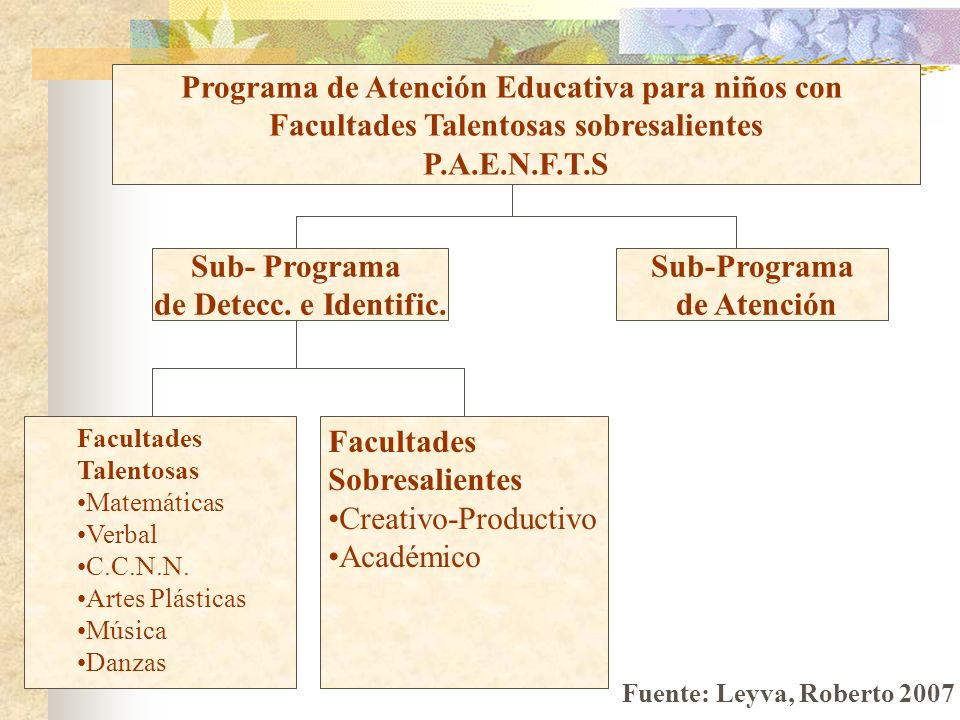 Programa de Atención Educativa para niños con