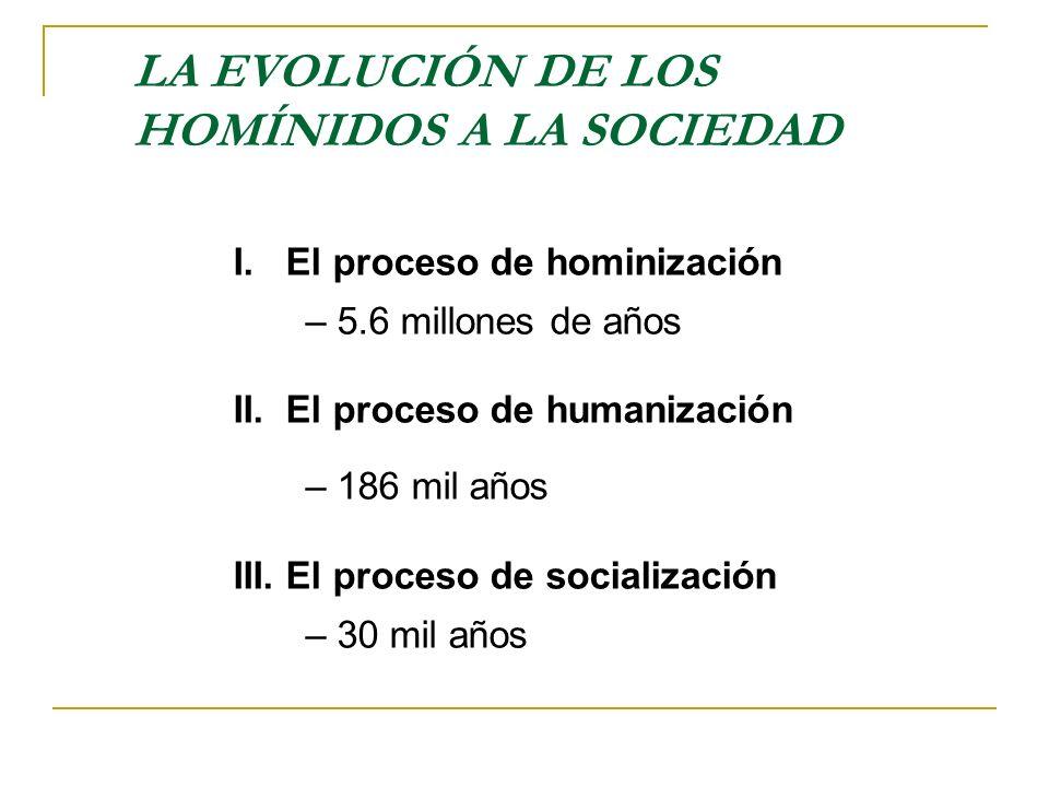 LA EVOLUCIÓN DE LOS HOMÍNIDOS A LA SOCIEDAD