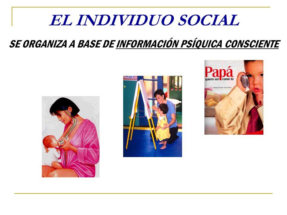 SE ORGANIZA A BASE DE INFORMACIÓN PSÍQUICA CONSCIENTE