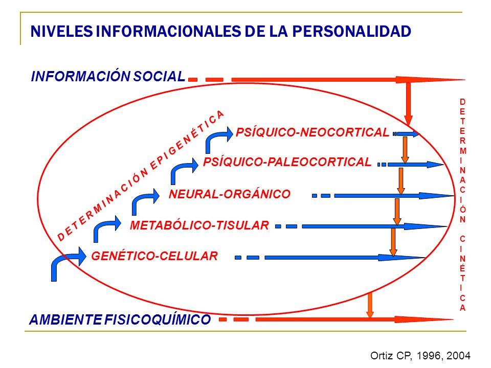 NIVELES INFORMACIONALES DE LA PERSONALIDAD