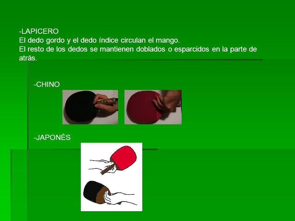 LAPICERO El dedo gordo y el dedo índice circulan el mango. El resto de los dedos se mantienen doblados o esparcidos en la parte de atrás.