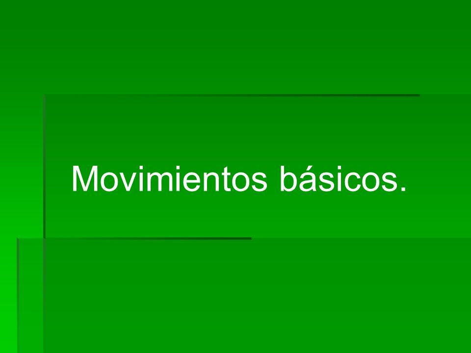 Movimientos básicos.