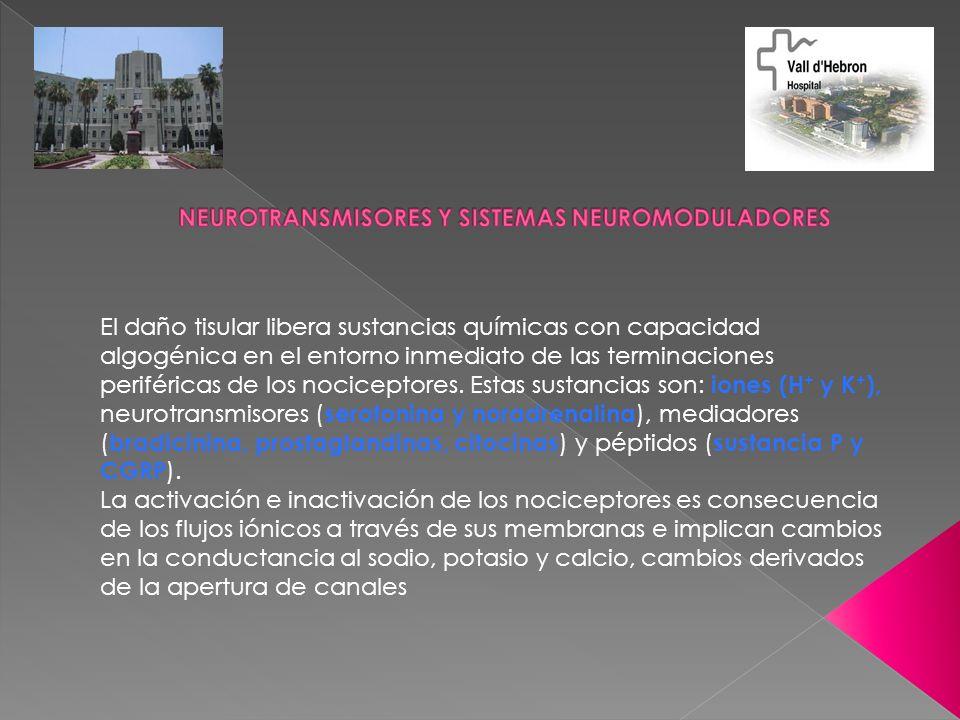 NEUROTRANSMISORES Y SISTEMAS NEUROMODULADORES