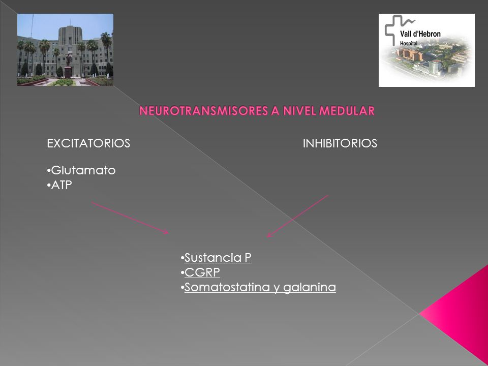 NEUROTRANSMISORES A NIVEL MEDULAR