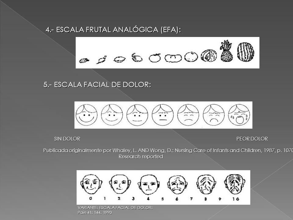 4.- ESCALA FRUTAL ANALÓGICA (EFA):