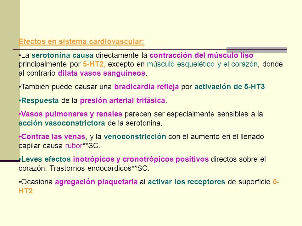 Efectos en sistema cardiovascular: