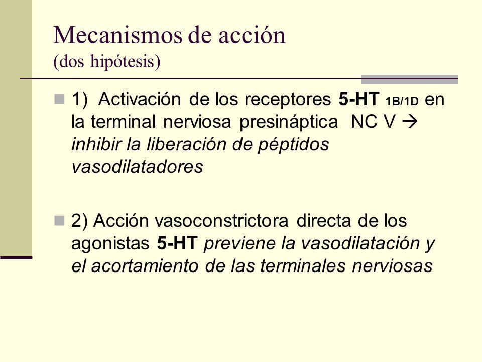 Mecanismos de acción (dos hipótesis)