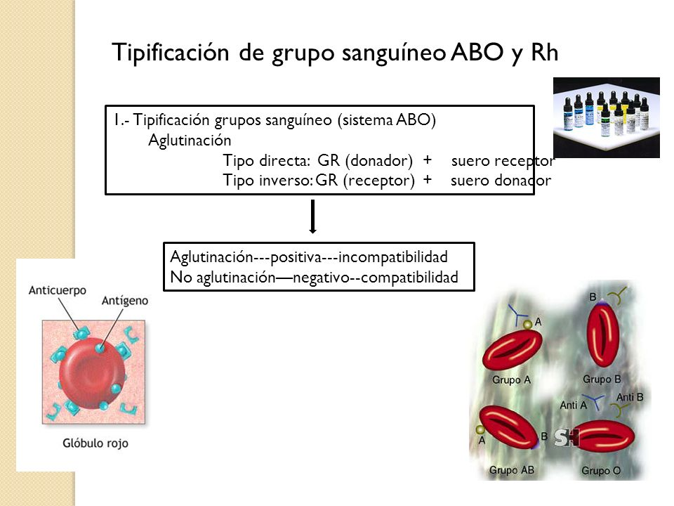 Tipificación de grupo sanguíneo ABO y Rh