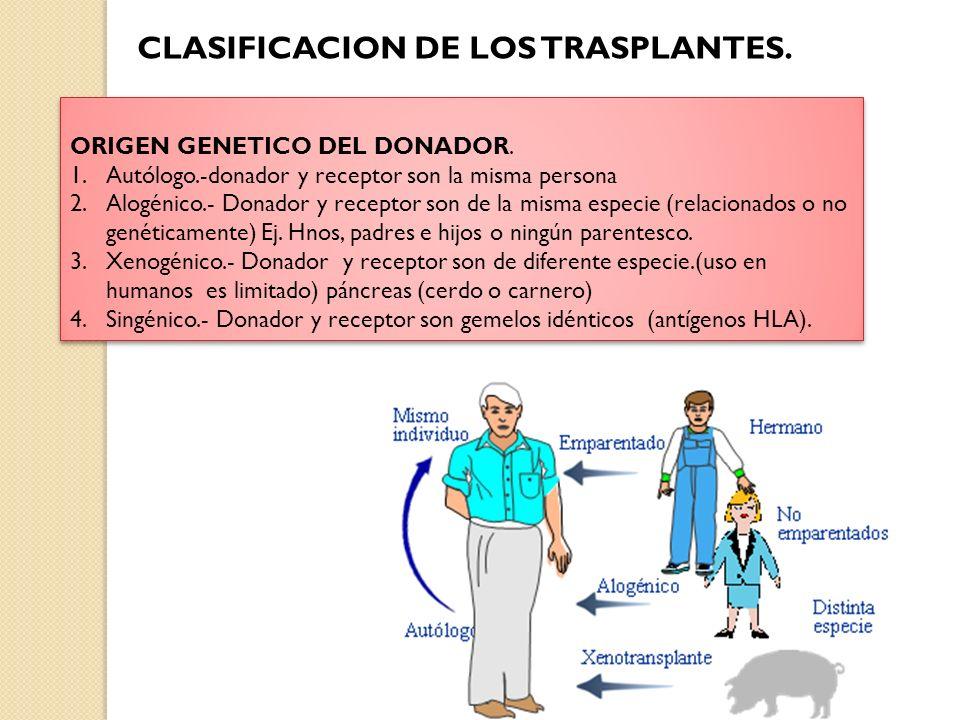 CLASIFICACION DE LOS TRASPLANTES.