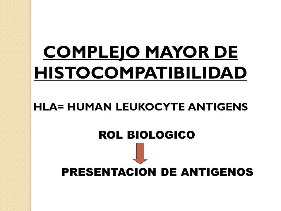 COMPLEJO MAYOR DE HISTOCOMPATIBILIDAD