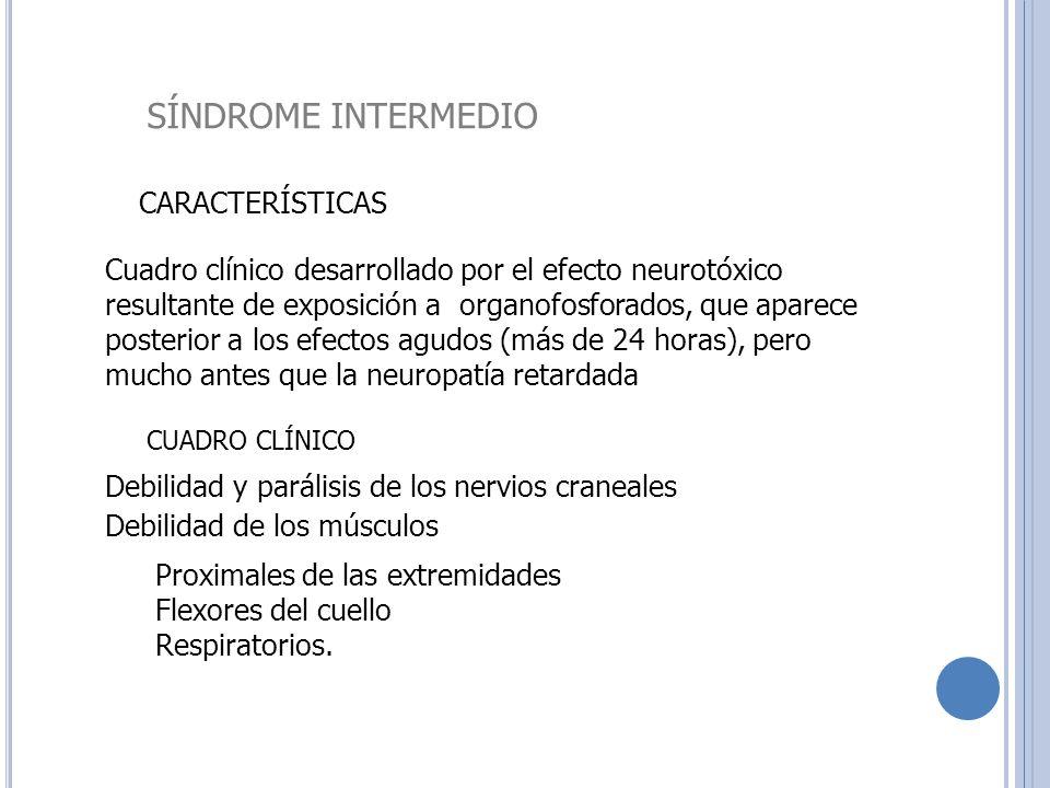 SÍNDROME INTERMEDIO CARACTERÍSTICAS