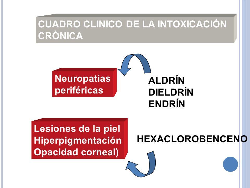 CUADRO CLINICO DE LA INTOXICACIÓN