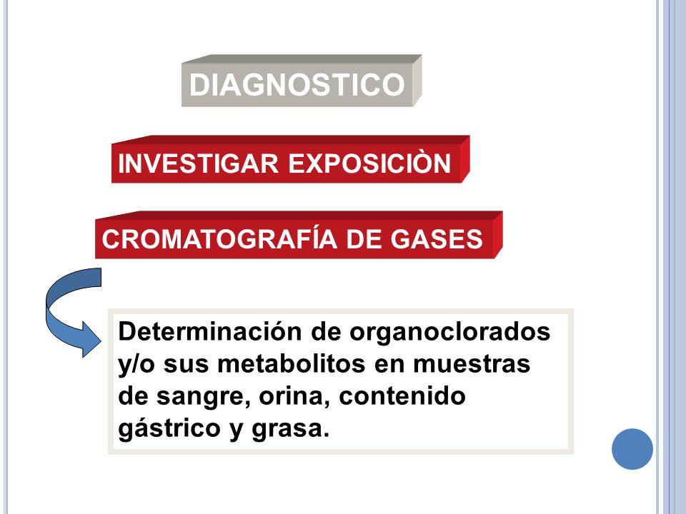 DIAGNOSTICO INVESTIGAR EXPOSICIÒN CROMATOGRAFÍA DE GASES