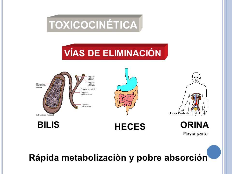 TOXICOCINÉTICA VÍAS DE ELIMINACIÓN BILIS ORINA HECES