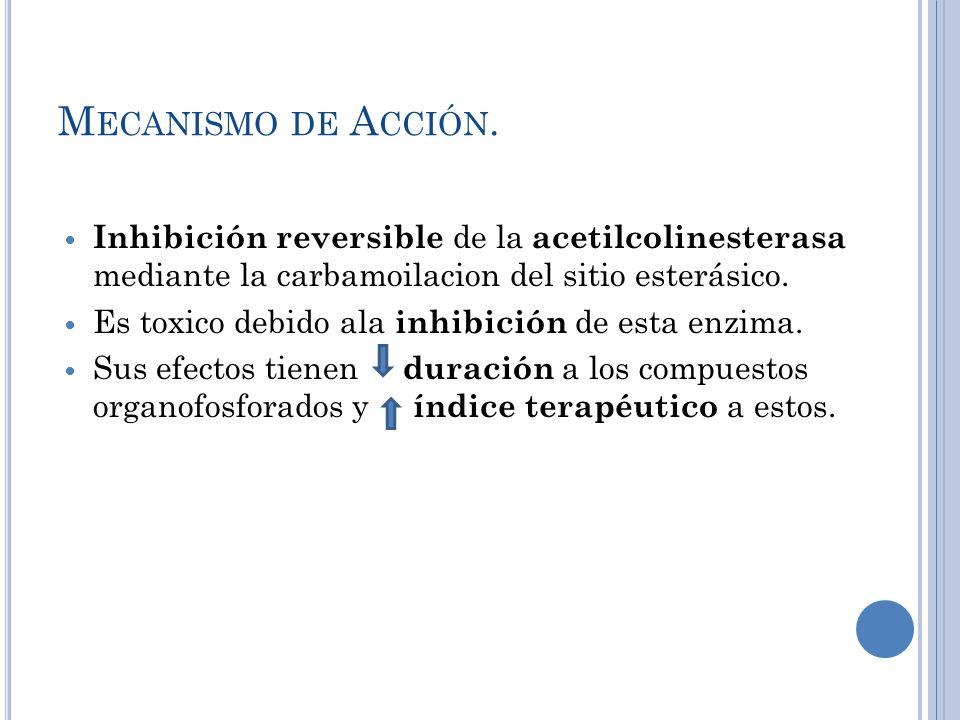 Mecanismo de Acción.Inhibición reversible de la acetilcolinesterasa mediante la carbamoilacion del sitio esterásico.