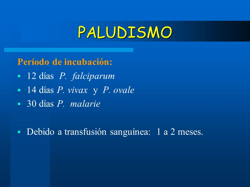 PALUDISMO Período de incubación: 12 días P. falciparum