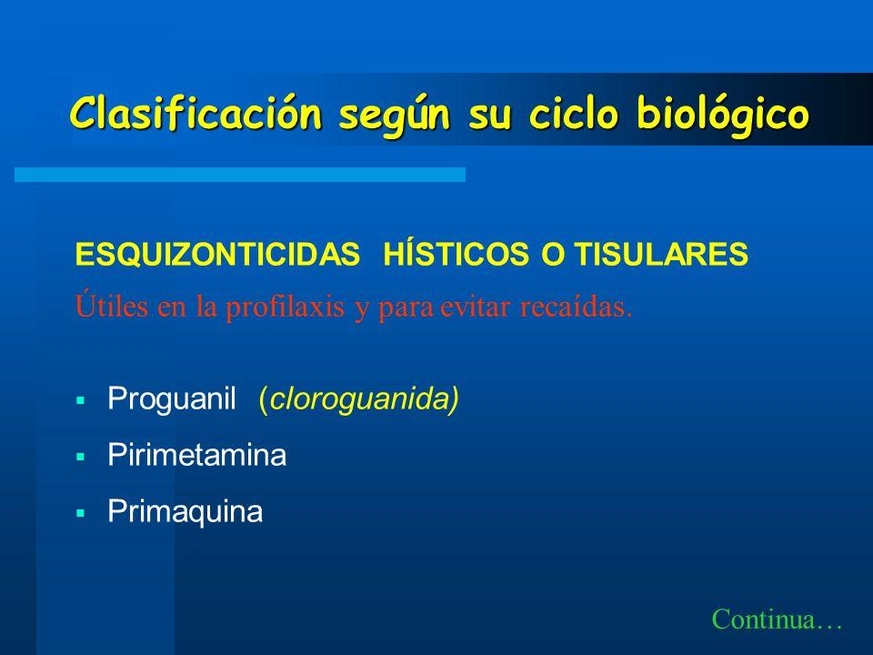 Clasificación según su ciclo biológico