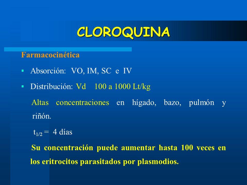 CLOROQUINA Farmacocinética Absorción: VO, IM, SC e IV