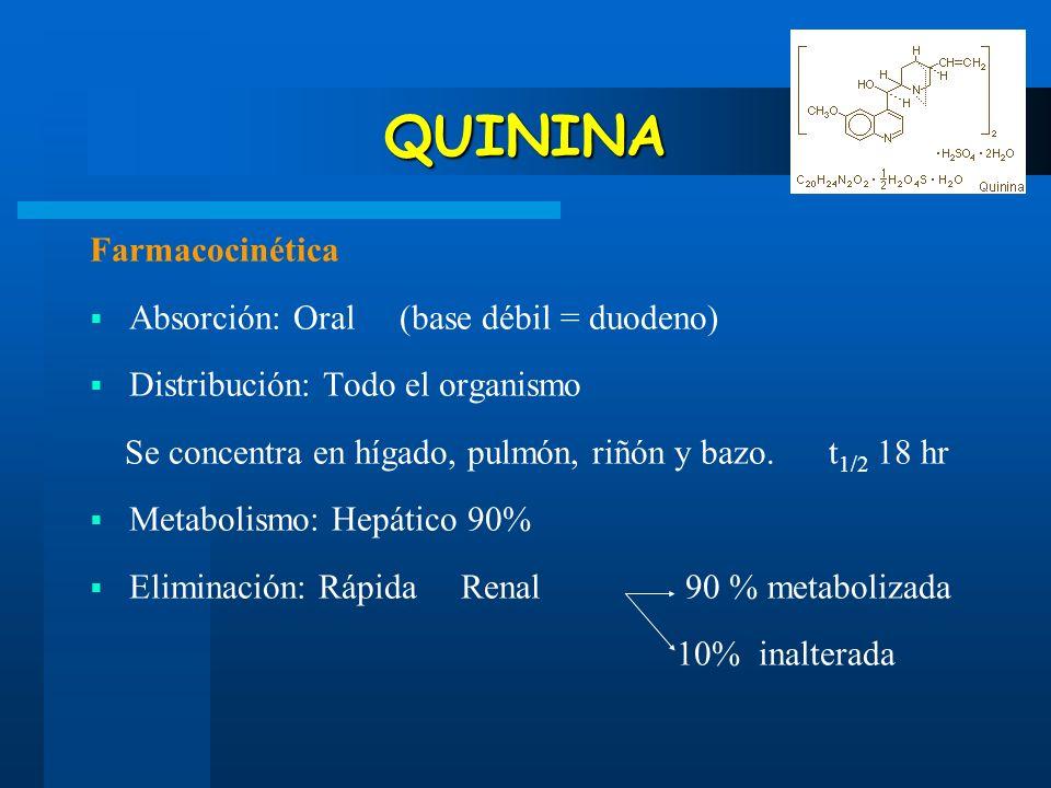 QUININA Farmacocinética Absorción: Oral (base débil = duodeno)