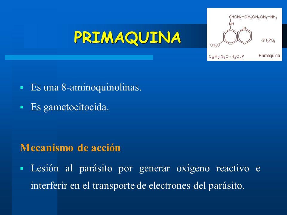 PRIMAQUINA Mecanismo de acción Es una 8-aminoquinolinas.