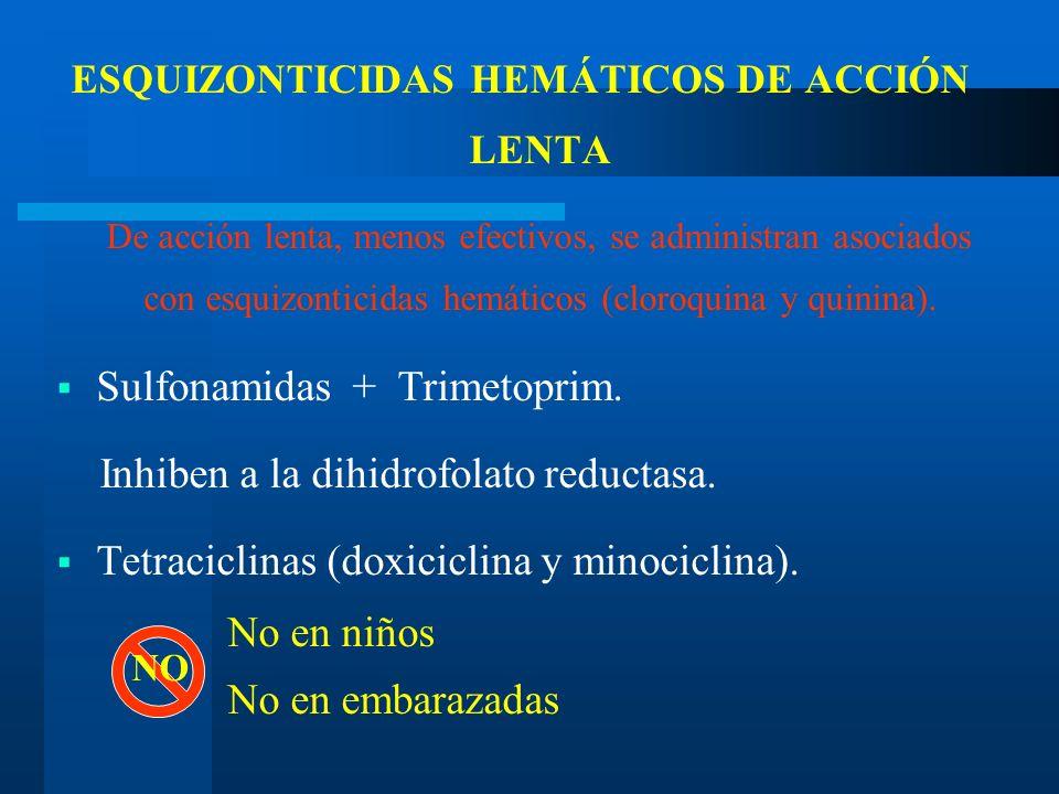 ESQUIZONTICIDAS HEMÁTICOS DE ACCIÓN LENTA