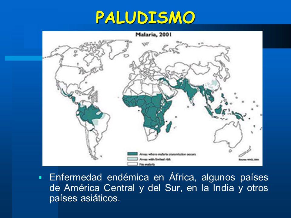 PALUDISMO Enfermedad endémica en África, algunos países de América Central y del Sur, en la India y otros países asiáticos.