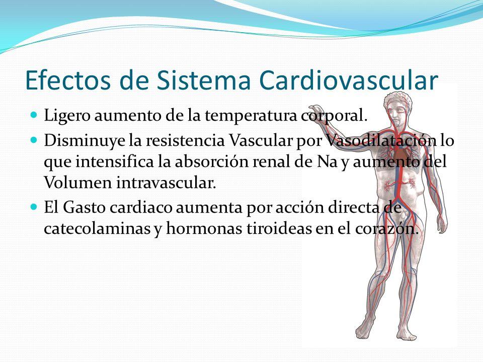 Efectos de Sistema Cardiovascular