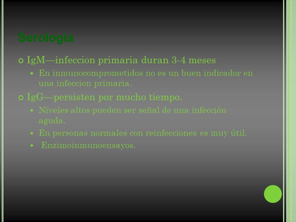 Serologia IgM—infeccion primaria duran 3-4 meses