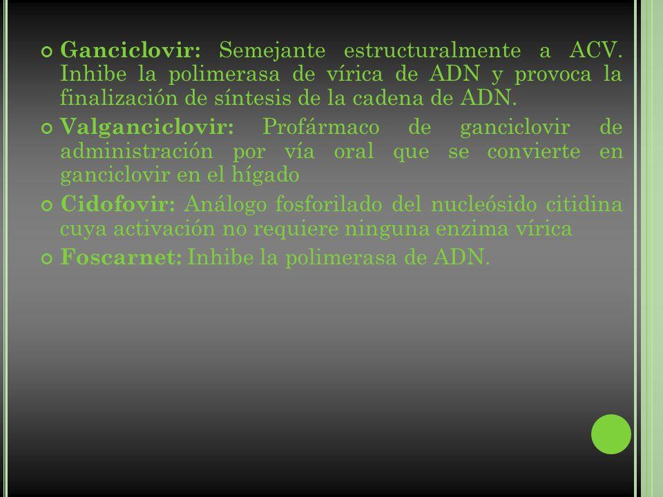 Ganciclovir: Semejante estructuralmente a ACV