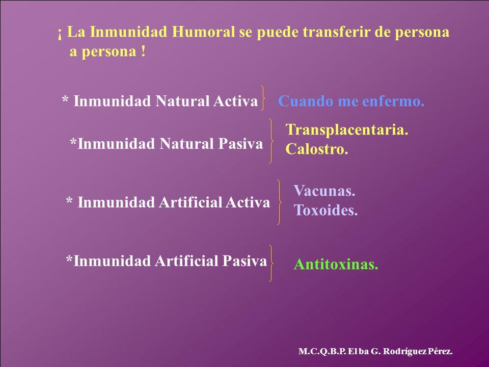 ¡ La Inmunidad Humoral se puede transferir de persona a persona !