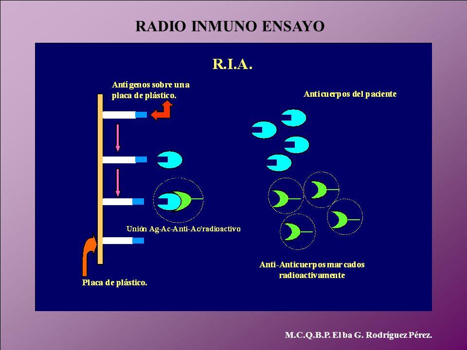 RADIO INMUNO ENSAYO M.C.Q.B.P. El ba G. Rodríguez Pérez.