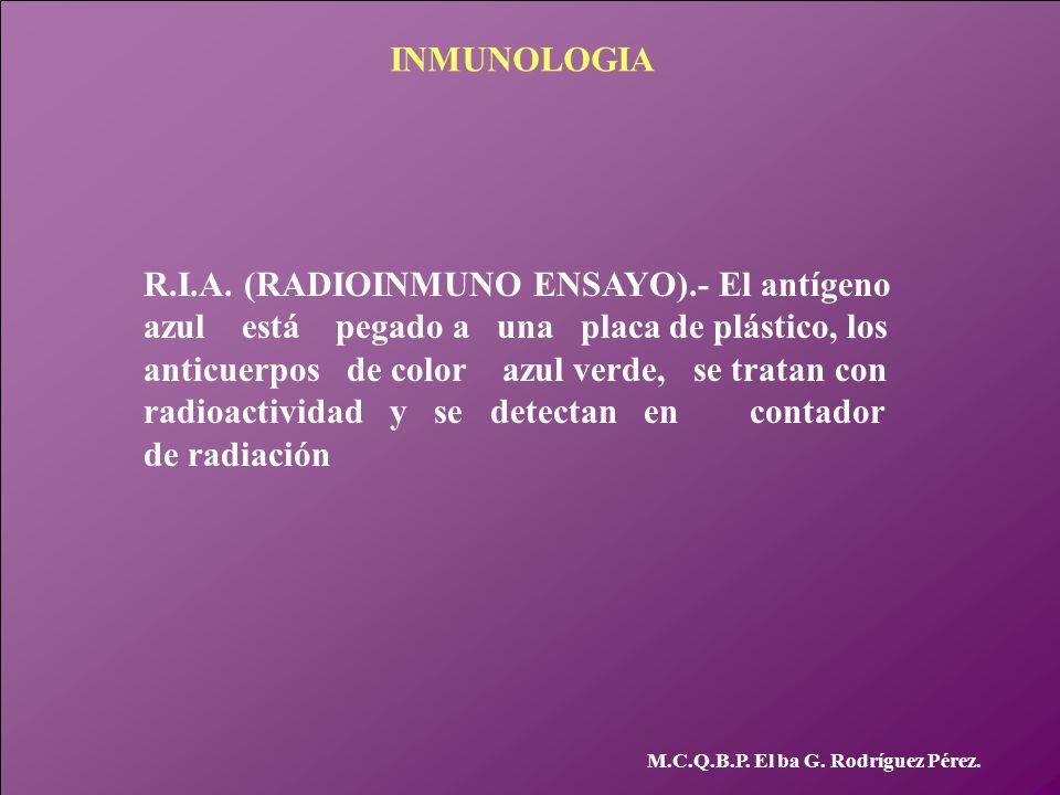 R.I.A. (RADIOINMUNO ENSAYO).- El antígeno