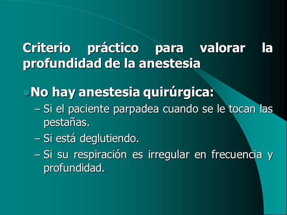 Criterio práctico para valorar la profundidad de la anestesia