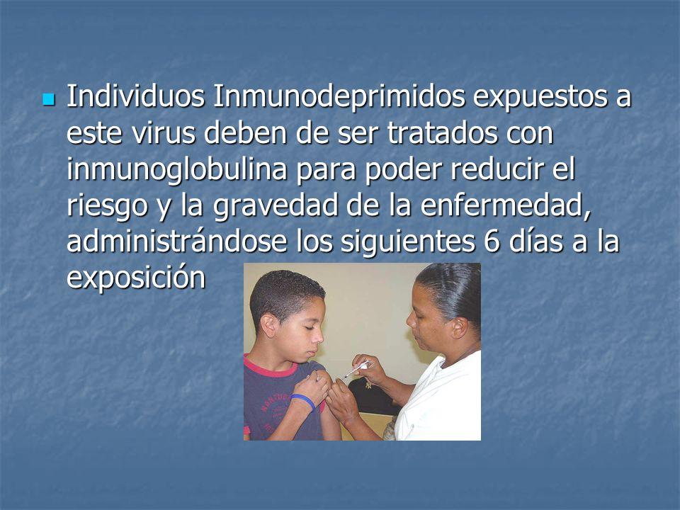 Individuos Inmunodeprimidos expuestos a este virus deben de ser tratados con inmunoglobulina para poder reducir el riesgo y la gravedad de la enfermedad, administrándose los siguientes 6 días a la exposición