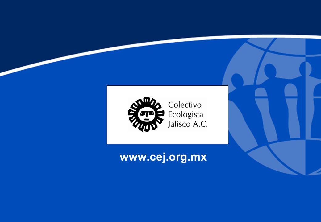 www.cej.org.mx