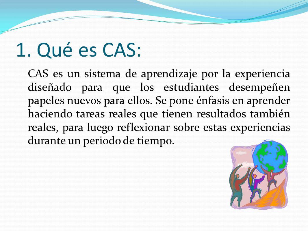 1. Qué es CAS:
