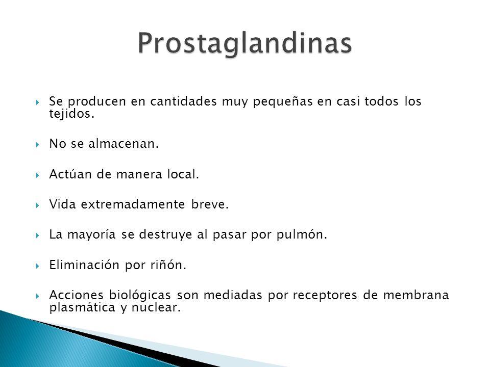 Prostaglandinas Se producen en cantidades muy pequeñas en casi todos los tejidos. No se almacenan.