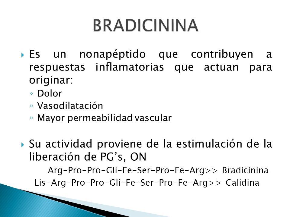 BRADICININA Es un nonapéptido que contribuyen a respuestas inflamatorias que actuan para originar: