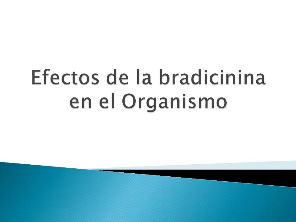 Efectos de la bradicinina en el Organismo