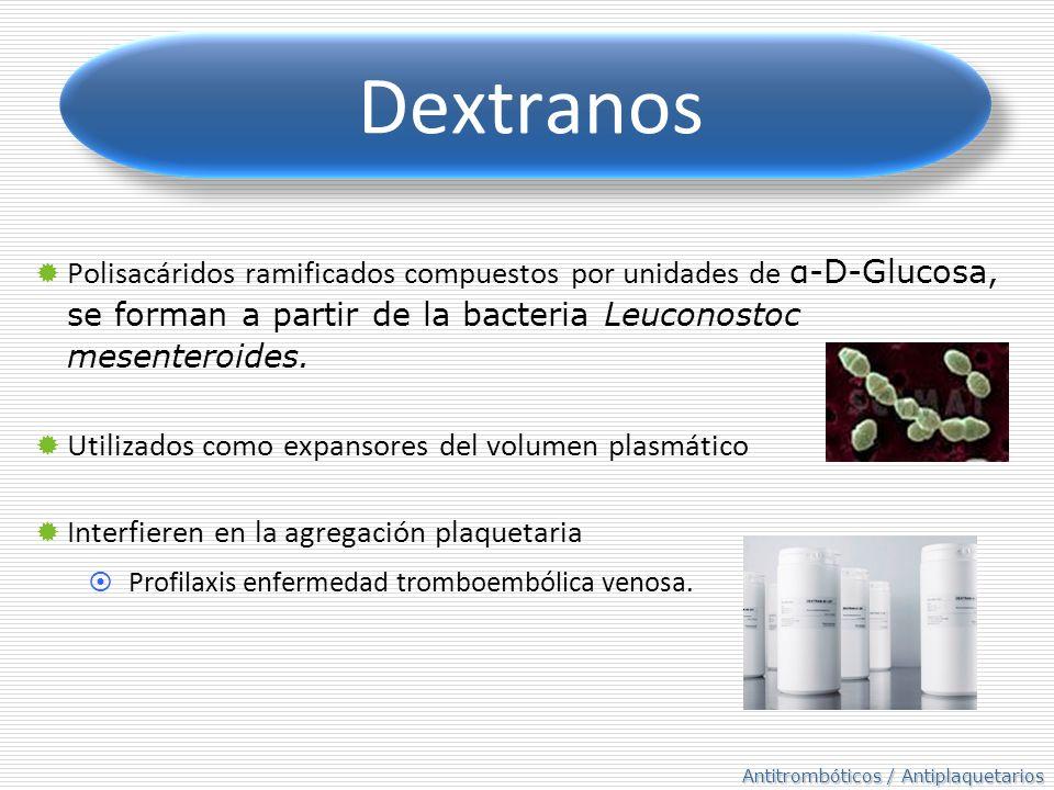 Dextranos Polisacáridos ramificados compuestos por unidades de α-D-Glucosa, se forman a partir de la bacteria Leuconostoc mesenteroides.