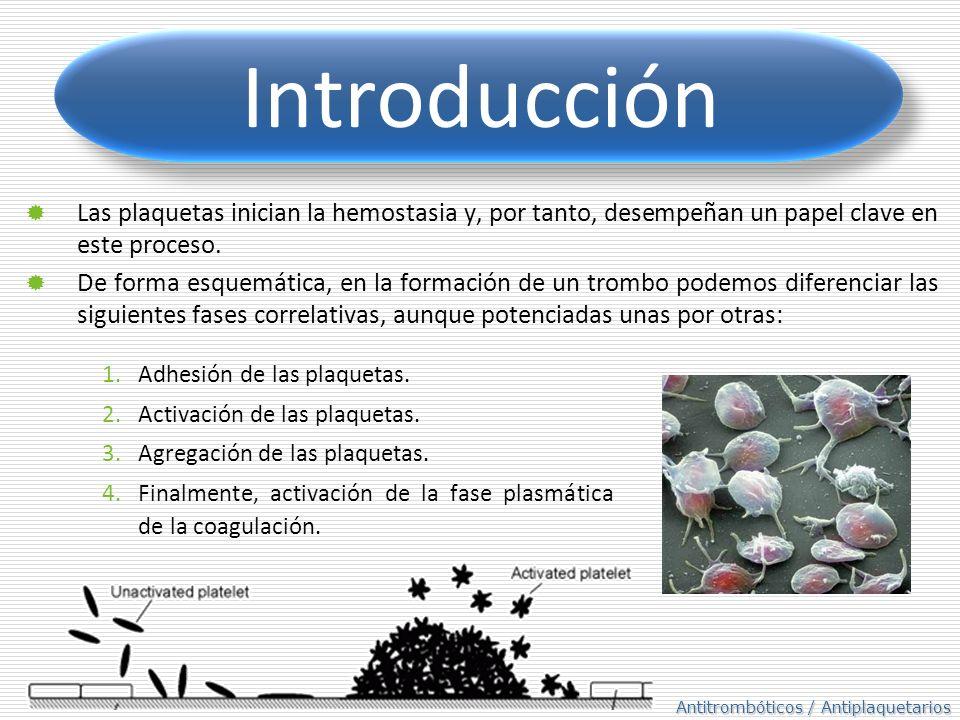 Introducción Las plaquetas inician la hemostasia y, por tanto, desempeñan un papel clave en este proceso.
