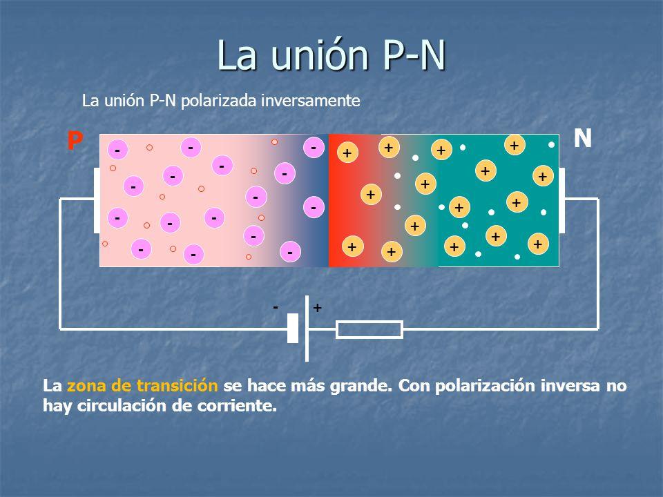 La unión P-N N P La unión P-N polarizada inversamente