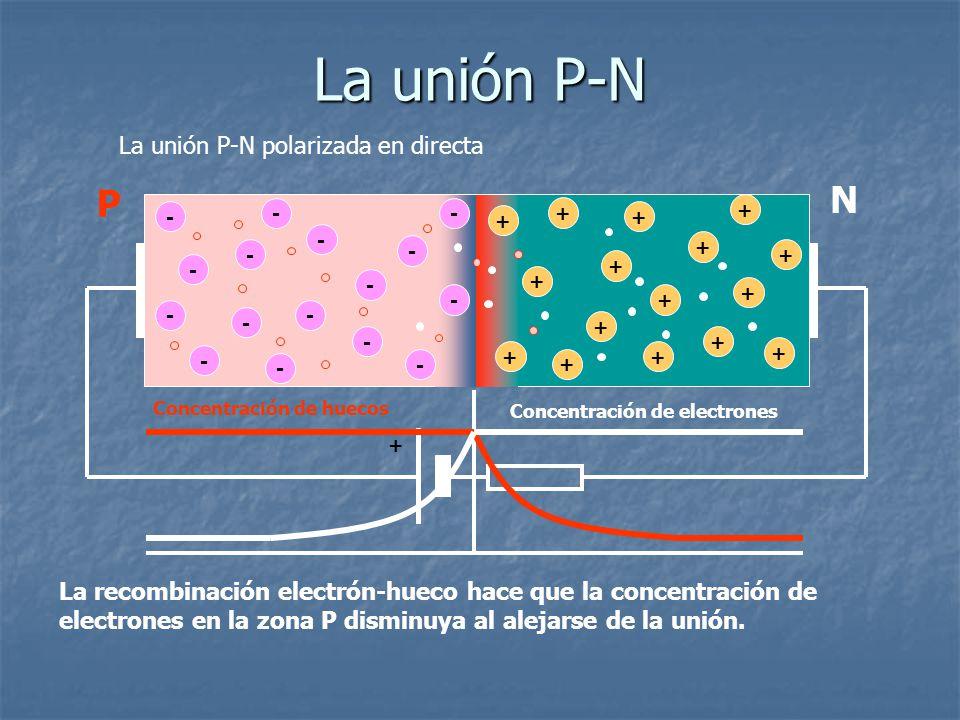 La unión P-N N P La unión P-N polarizada en directa