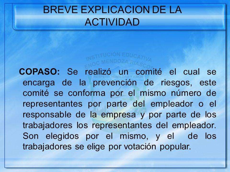 BREVE EXPLICACION DE LA ACTIVIDAD