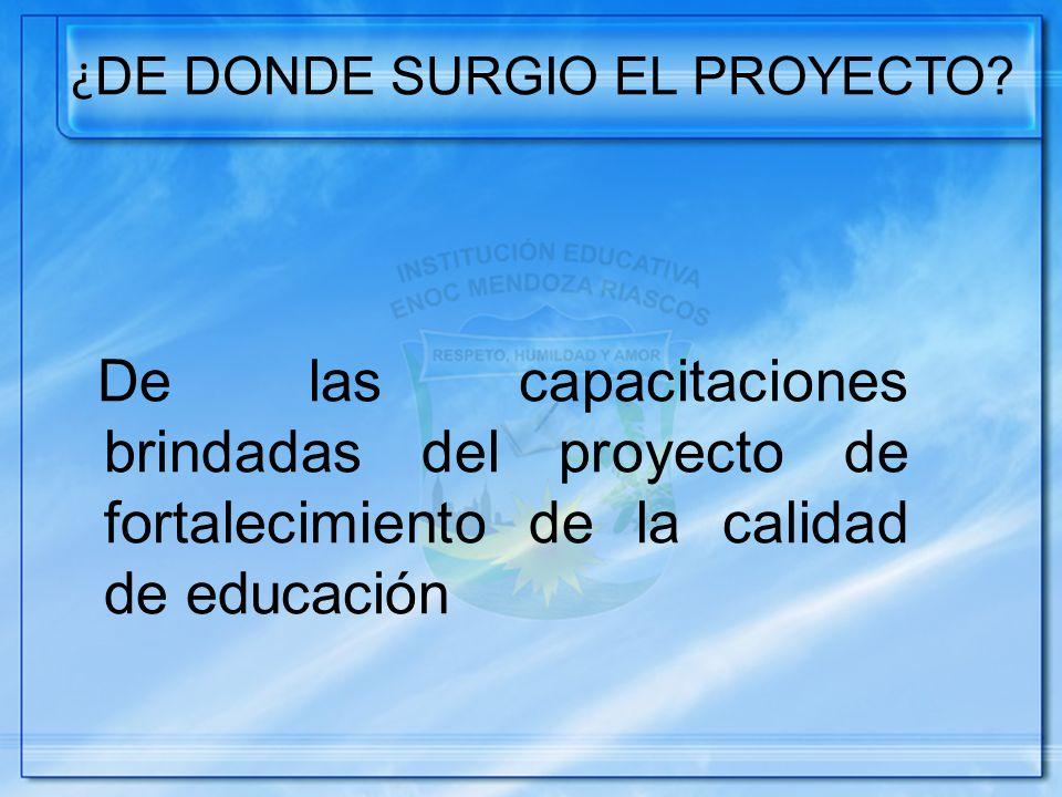¿DE DONDE SURGIO EL PROYECTO