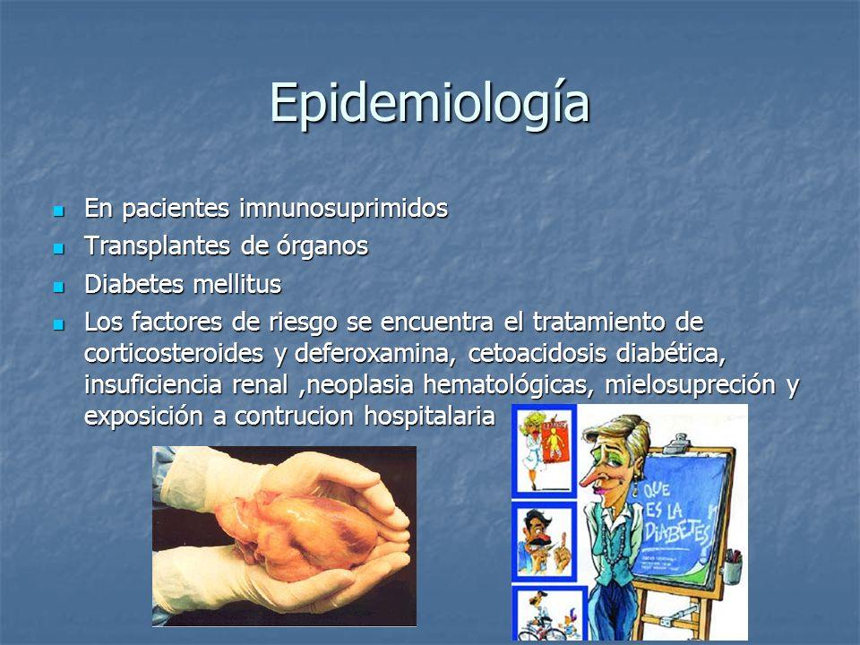 Epidemiología En pacientes imnunosuprimidos Transplantes de órganos
