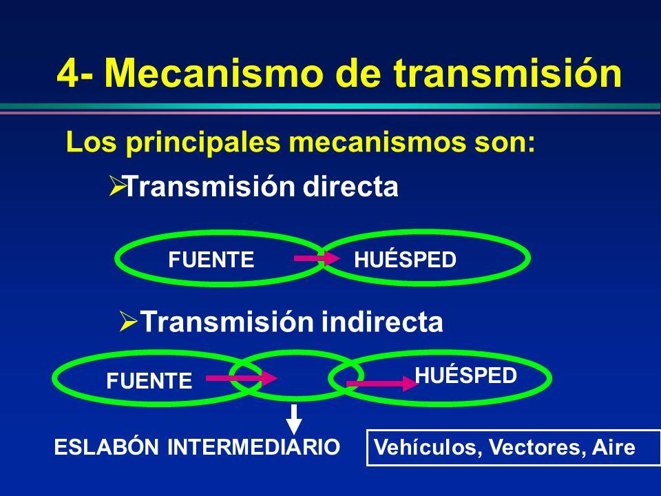 4- Mecanismo de transmisión