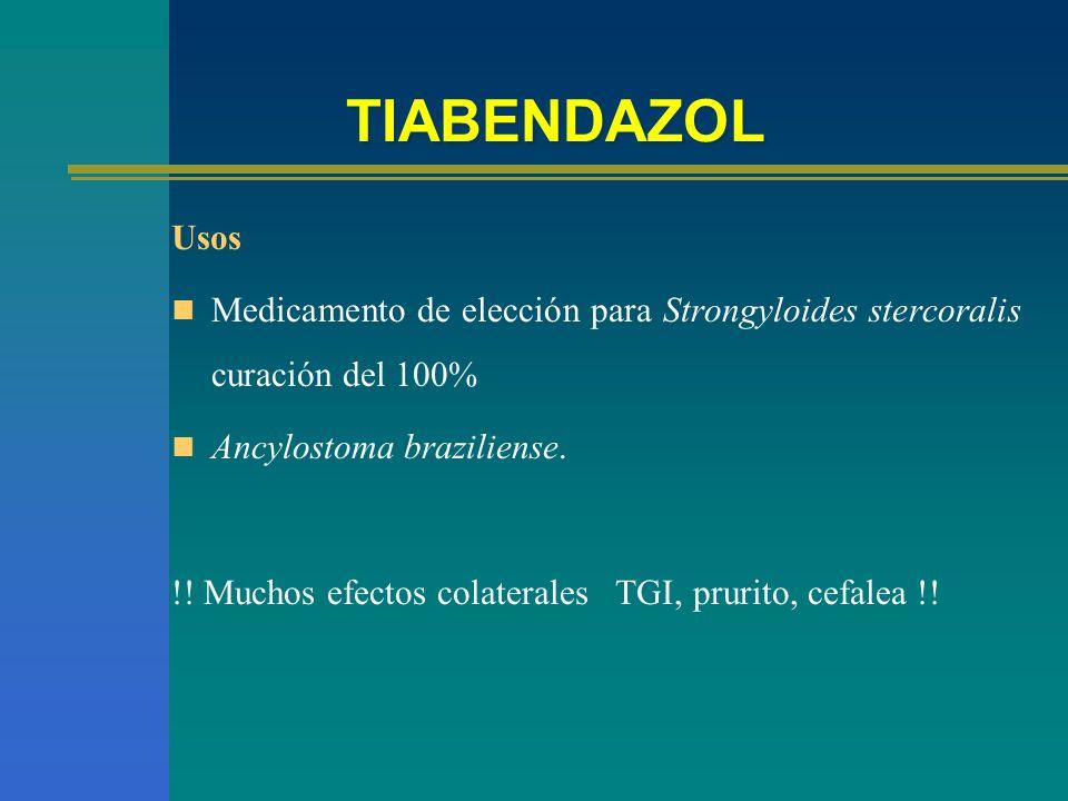 TIABENDAZOLUsos. Medicamento de elección para Strongyloides stercoralis curación del 100% Ancylostoma braziliense.