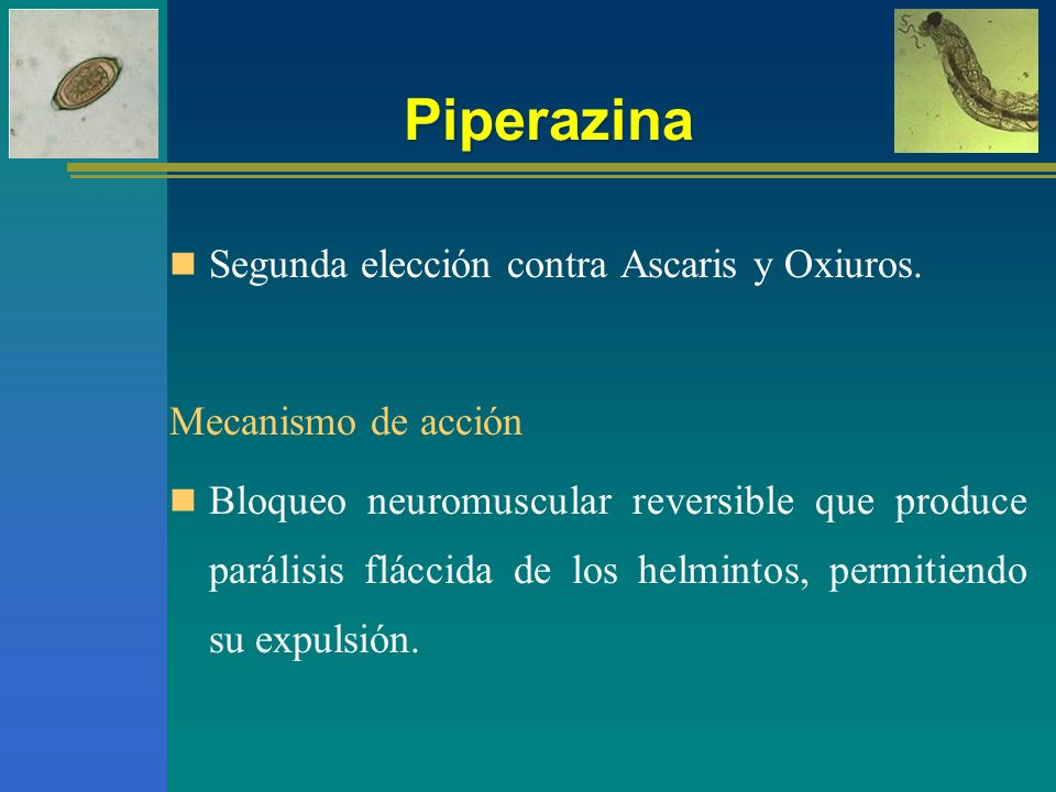Piperazina Segunda elección contra Ascaris y Oxiuros.