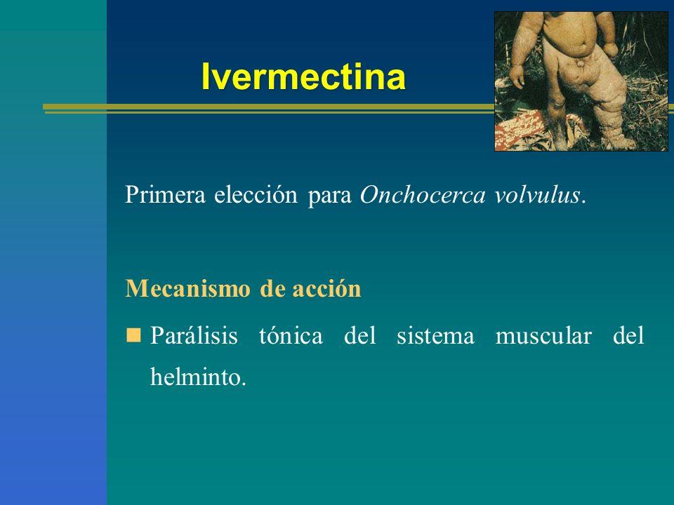 Ivermectina Primera elección para Onchocerca volvulus.